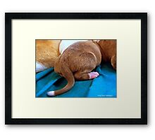 Puppy Butt Framed Print