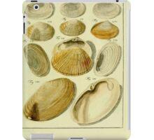 Neues systematisches Conchylien-Cabinet - 320 iPad Case/Skin