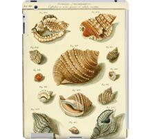 Neues systematisches Conchylien-Cabinet - 145 iPad Case/Skin