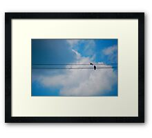 Pigeon's Wire Framed Print