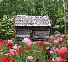 Little Cabin in the spring time by olehippy13
