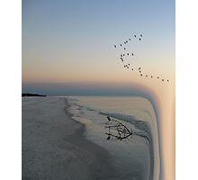 365 Photographic Print