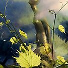 Morning Light (from my exhibition) by Antanas