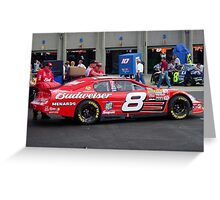 Dale Earnhardt Jr. NASCAR Budweiser Greeting Card