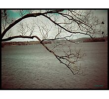 Cold Day Memory Photographic Print