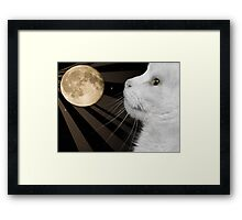 The Cat with the Moon and Stars in His Eyes Framed Print