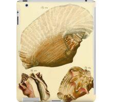 Neues systematisches Conchylien-Cabinet - 186 iPad Case/Skin