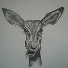 Impala with attitude. My 1st pencil drawing by EllEssDee