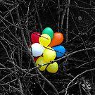 Balloons by L. Haverkamp