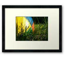 juggling ball Framed Print
