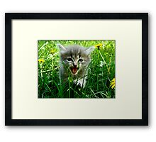 You there! Drop and give me 20! Framed Print