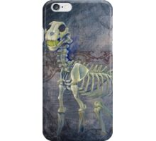 Fetch by Jennifer Anichowski iPhone Case/Skin