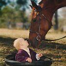 Portrait & Animal Photography © Vicki Ferrari Photography by Vicki Ferrari