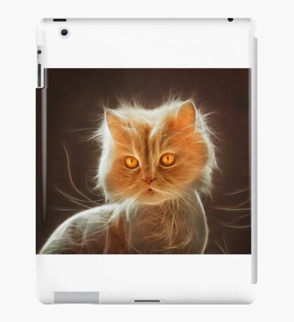 Cat's Eyes iPad Case/Skin