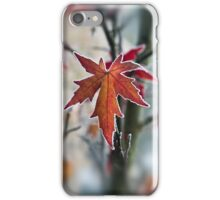 Maple In Frost iPhone Case/Skin