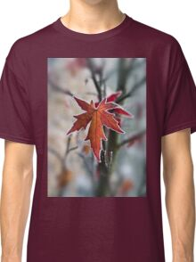 Maple In Frost Classic T-Shirt