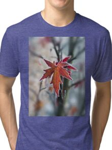 Maple In Frost Tri-blend T-Shirt