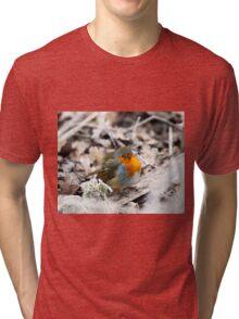 Frosty Robin Tri-blend T-Shirt