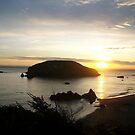 Goat/Bird Island at Sunset by Sheri Scherbarth
