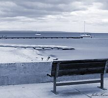 Seat by the Sea by Julia Harwood
