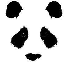 Panda_01 Photographic Print