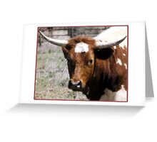 Bovine Portrait Greeting Card