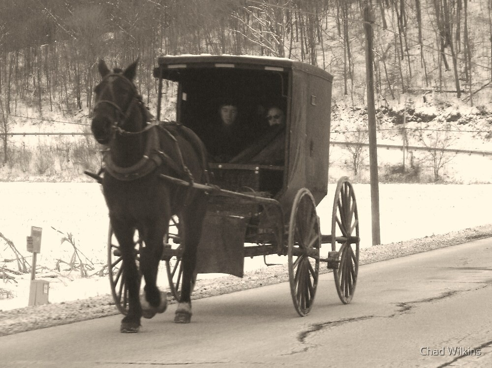 Amish near Breman Ohio in Fairfield County by Chad Wilkins