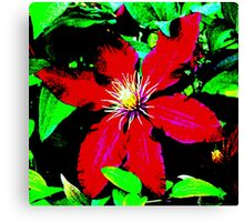 Big Red Flower Canvas Print