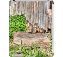 Marmot Love iPad Case/Skin