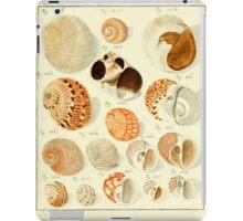 Neues systematisches Conchylien-Cabinet - 290 iPad Case/Skin
