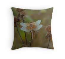 Dragonfly near St Peter, MN Throw Pillow
