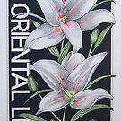 Oriental Lily by J.D. Bowman