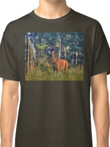 Searching for Breakfast Classic T-Shirt