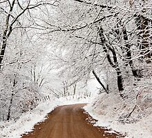 First Snow by Rick Stockwell