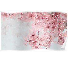 Meshed Up Japanese Sakura Blossoms Poster