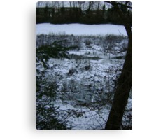 Patient Nature (discarded shopping trolleys among snow) Canvas Print