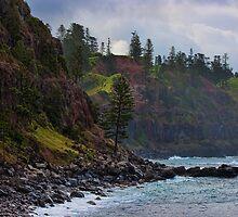 Norfolk Island coastline 2 by Jennifer Bailey