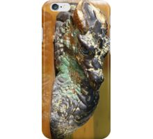 Dragons Head iPhone Case/Skin