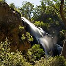 MacKenzie falls (3) by Pascal and Isabella Inard