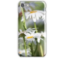 A daisy a day ... iPhone Case/Skin