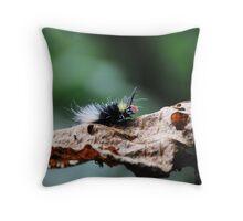 Red Head Caterpillar - Bwindi Impenatrable National Park , Uganda Throw Pillow