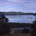 Coromandle Peninsula, NZ by JeniNagy