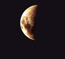 48.73674% lunar by vampvamp