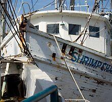 Shrimp Chaser by Jane Best