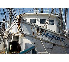 Shrimp Chaser Photographic Print