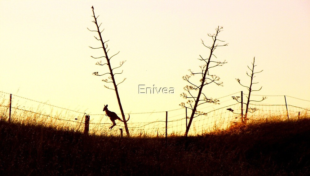 Hopping towards the setting sun by Enivea