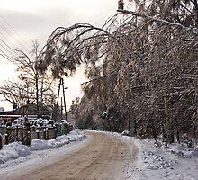 Winter III by Martulia