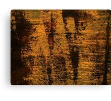 Grunge Texture Background Canvas Print