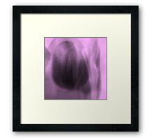 Tulip in a Tulip ©  Framed Print