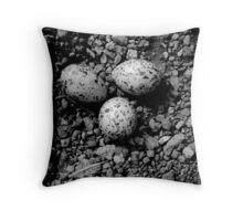Oyster Catchers Eggs Throw Pillow